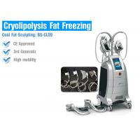 Wholesale Multifunction Cryolipolysis Body Slimming Machine , Fat Freezing Body Slimming Equipment from china suppliers
