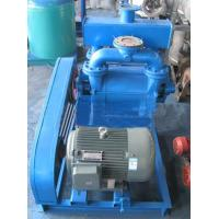 Wholesale 2BE1 Native Paper Water Vacuum Pump from china suppliers