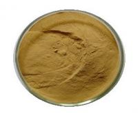 China Sennosides powder Senna Leaf Extract on sale