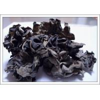 Wholesale Dried Black Fungus from china suppliers