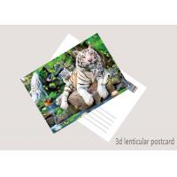 Wholesale Durable Animal Theme OEM 3D Lenticular Postcard / Gift Card Printing from china suppliers