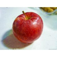 China 2016 New Crop China Natural Red and Green Apple on sale