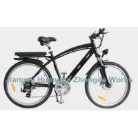China Moutain Electric Bike 02 on sale