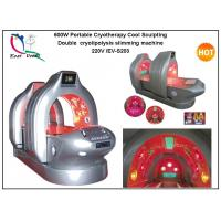 Wholesale Deluxe Magical Light Slimming Spa Capsule/Double cryolipolysis slimming machine from china suppliers