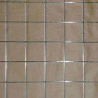 Wholesale 1/4-inch Electro-galvanized Welded Wire Mesh from china suppliers