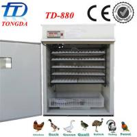 Wholesale best quality automatic  egg incubator TD-880 from china suppliers