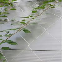 Stainless steel wire rope mesh net as architecture plant
