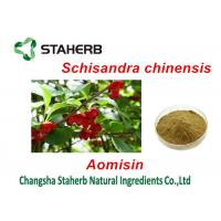 Buy cheap Chinese Magnolia Vine Fruit Antibacterial Plant Extracts , Herbal Extract Powder from wholesalers