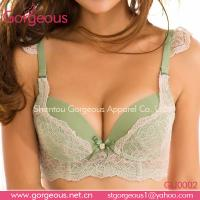 Wholesale 2013 new design hot sell lady secret bra from china suppliers
