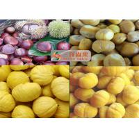 China Sweet Natural Organic Canned Vegetables / Frozen Peeled Roasted Chestnut on sale