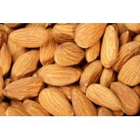 China Blood pressure Organic Apricot Kernels Bitter Shelled , Apricot Seeds For Sale on sale
