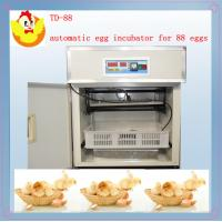 Wholesale small egg incubator TD-88 from china suppliers