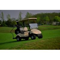 Buy cheap Custom Electric 2 Seater Golf Carts / Golf Buggy Club Car Street Legal from Wholesalers