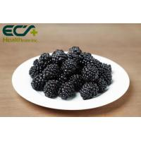 Wholesale Boosts Immunity Blackberry Extract Supplement , Organic Freeze Dried Fruit Powder from china suppliers