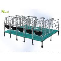 Wholesale Swine Farm Galvanized Pipe Pig Gestation Stalls / Pregnant Swine Gestation Crates from china suppliers