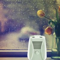 China Mini DC 6V Home Electronic Air Purifier With Dual Ion And Ozone Function on sale