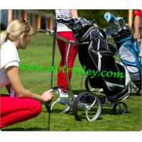 Wholesale Golf chariot from china suppliers