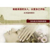 Wholesale natural SPA whitening blended essential oil from china suppliers