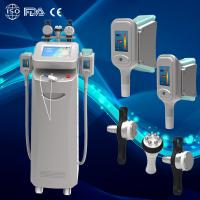 Wholesale professional cryolipolysis cool body sculpting machine from china suppliers