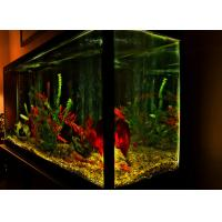 China New hot sale acrylic aquarium fish tank led lighting with Stand, Lid, Led Light and air pump on sale