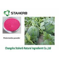China Watermelon Extract Dehydrated Fruit Powder Food Additive Improve Nutritional Value on sale