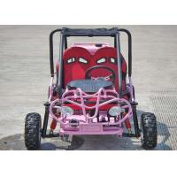 Wholesale 110cc Kids Off Road Go Kart Two Seats Rear Rack With CVT Transmission / Reverse from china suppliers