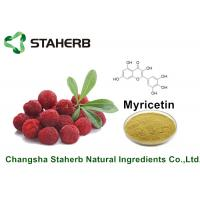 Buy cheap Bayberry Bark Pure Natural Plant Extracts Myricetin 98% For Health Product By from wholesalers