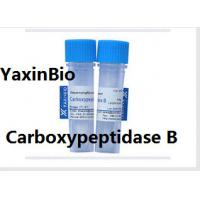 Buy cheap Animal Components Free Sequence Grade Carboxypeptidase B for  Protein Sequence Analysis from wholesalers