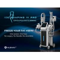 2017 newest design products supply OEM/ODM service Cryolipolysis Slimming (ICE SHAPING IV PRO)