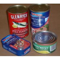 China 311# canned mackerel filet in sunflower oil on sale