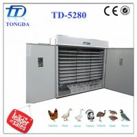 Wholesale TD-5280 full automatic egg incubator the equipment for business from china suppliers