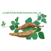 Wholesale Kudzu Root extract, Isoflavones 40%, CAS No.: 3681-99-0, Auxiliary lower blood pressure, Arctium Extract, Chinese Extrac from china suppliers