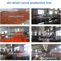 China Production and processing all kinds of shapes of dry-carrot sliced/granule/cube on sale