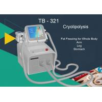 Wholesale Touch Screen Cryolipolysis Slimming Machine 2 Handles Lose Weight Fat Freezing Removal from china suppliers