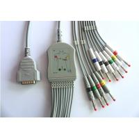 China GE- Marquette / Hellige ECG Machine Cable VS-2P Plug One Piece CE Approval on sale