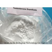 Testosterone Enanthate Steroid Male Hormone , Healthy Mass Building Steroids CAS 315-37-7