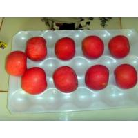 Wholesale Fuji Apple,Apple Supplier,Chinese Apple from china suppliers