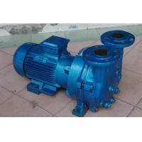 Quality 2BV5121 Single Stage Water Ring Vacuum Pump for sale