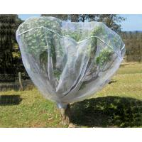 Wholesale Fruit Tree Net, 20-50mesh,0.5-6.0m,green and white,protect the trees,Agricultural Plastic Products from china suppliers