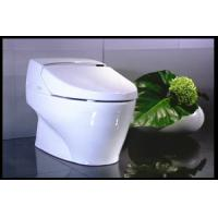 Wholesale self-clean bidet toilet luxury toilet and bidet without water tank automatic self-clean toilet from china suppliers