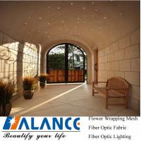 Wholesale LED Fibre Optical  kit for Outdoor Entry Hall from china suppliers
