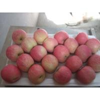 Wholesale Fresh Fuji Apples from china suppliers