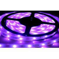 Wholesale 24V,110V,240V DC SMD 5050 RGB Led Strip Lights For Home, Holiday With 5m / roll from china suppliers
