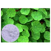 Anti Inflammatory Gotu Kola Leaf Extract , Natural Centella Asiatica Leaf Extract