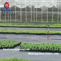 Wholesale Black pp woven fabric ground cover weedmat Agricultural Plastic Woven Mulch Weedmat from china suppliers