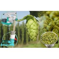 Wholesale Make Hops Pellets for Brewery/Small Wood Pellet Mill from china suppliers