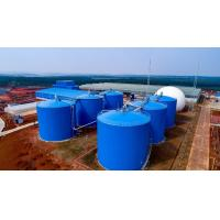 Wholesale 2 MW CHP Fertilizer Storage Tanks Corn Straw Co Digestion ISO Approved from china suppliers