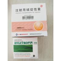 Wholesale Pharmaceutical Grade HGH Human Growth Hormone Hygetropin 200iu 25 Vials / Kit from china suppliers