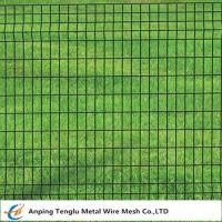 Wholesale Euro Fence|Welded Wire Mesh Fencing 50x50mm by PVC Coated Wire from china suppliers