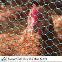 Wholesale Chicken Wire Mesh Florist Hex Netting 13~50mm Mesh Size for Building or Poultry from china suppliers